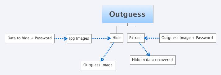 Outguess process