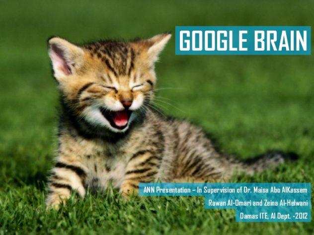 Google Brain Cat